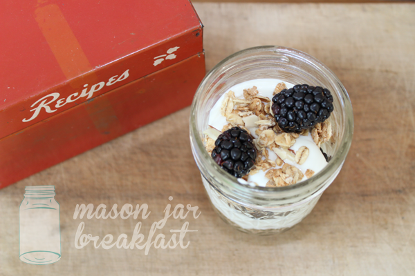 blackberry yogurt parfait with agave syrup