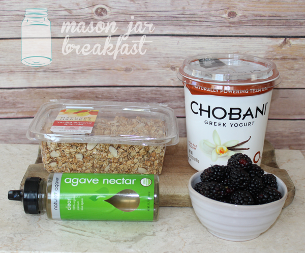 blackberry yogurt parfait with agave syrup ingredients