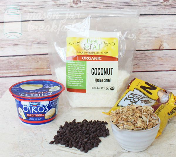 choco-coconut yogurt delight recipe ingredients