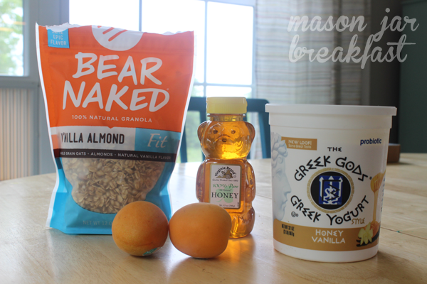 Greek yogurt parfait ingredients